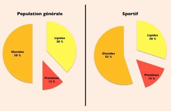 nutrition-sportive-schema