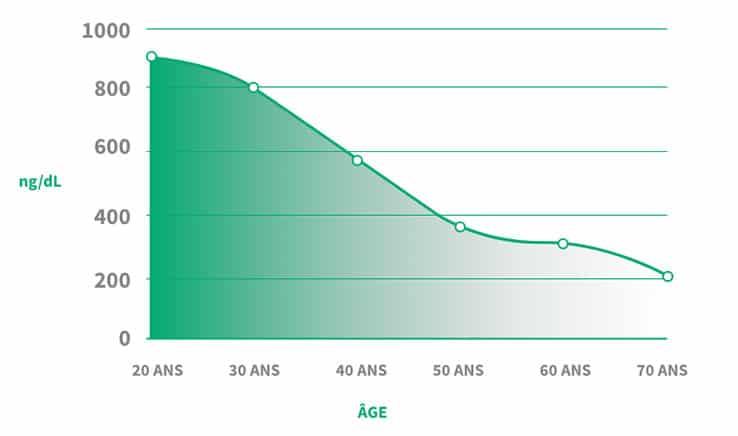 niveau-testosterone-age
